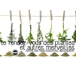 le-rendez-vous-des-plantes-maud-guillemet